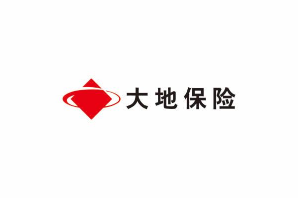 大地保险品牌命名,大地保险VI设计,大地保险包装设计