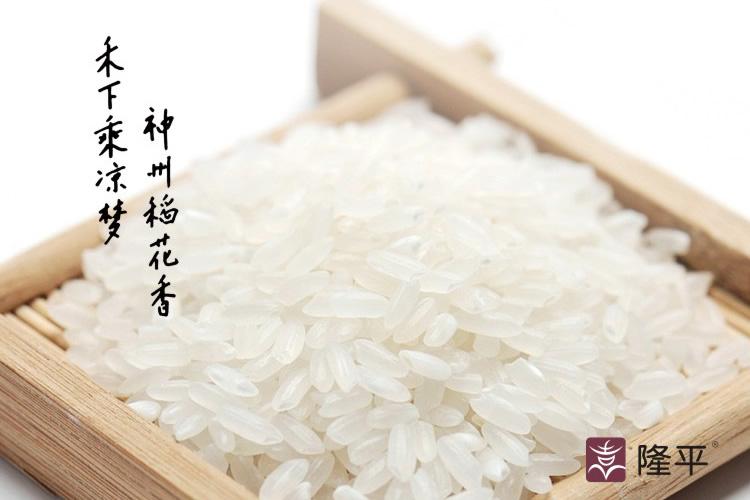 隆平大米包装设计,隆平大米画册设计