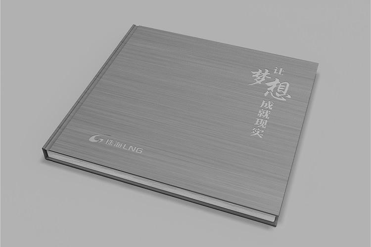 珠海LNG画册设计