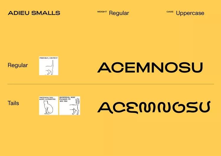 字体,设计,创意,平面,品牌