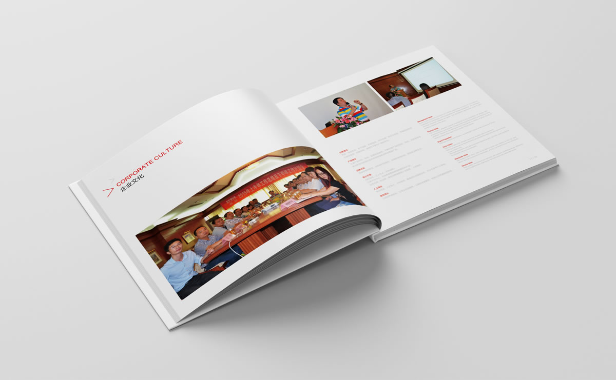 渴望集团商标设计,渴望集团logo设计,渴望集团画册设计