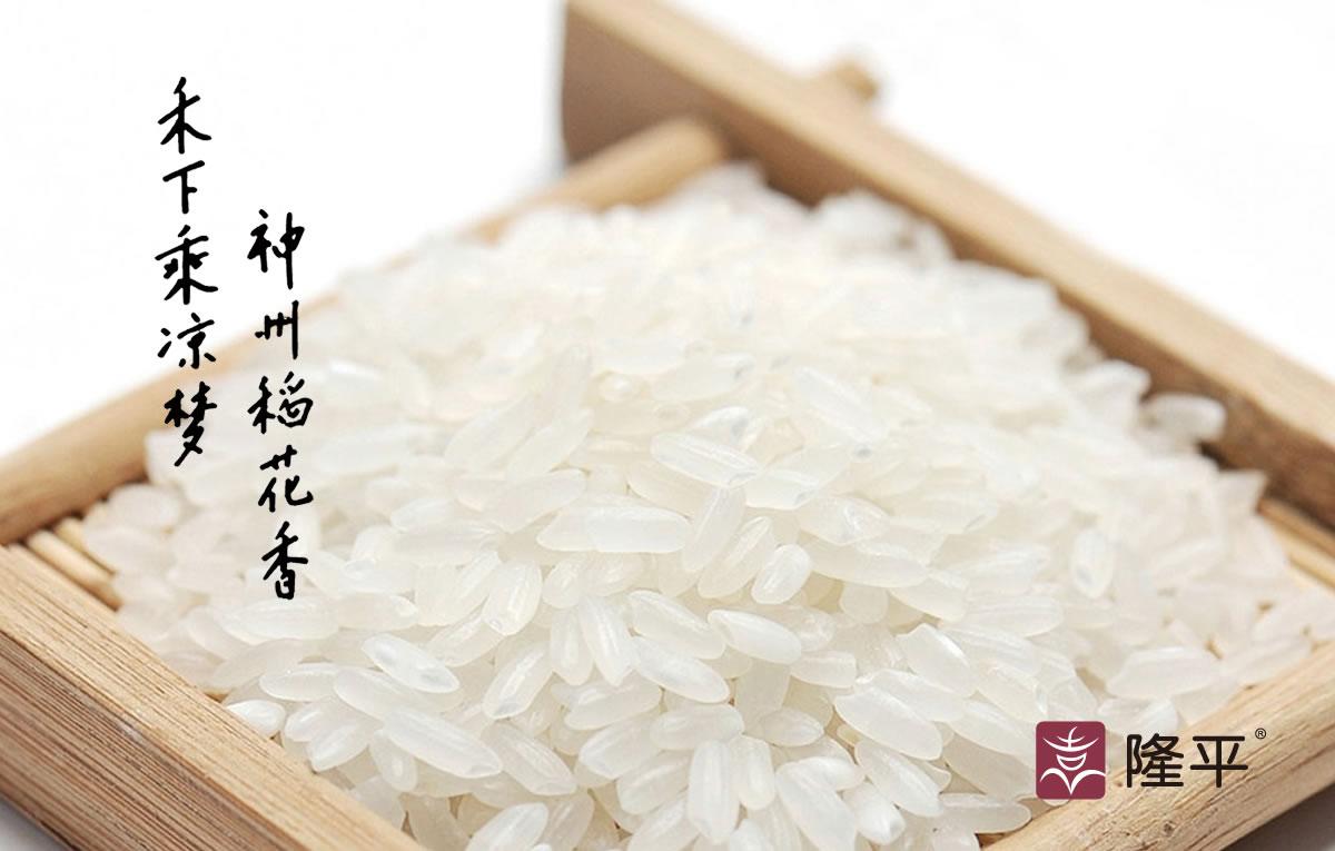 隆平大米商标设计,隆平大米logo设计,隆平大米画册设计